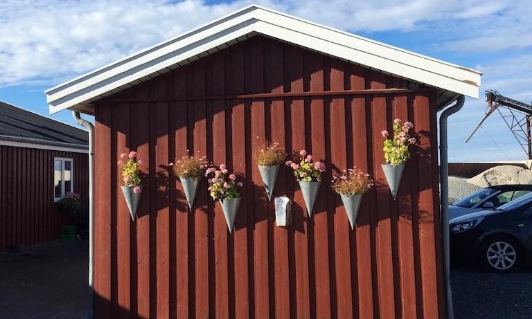 Ein Haus mit Blumen dekoriert in Dänemark