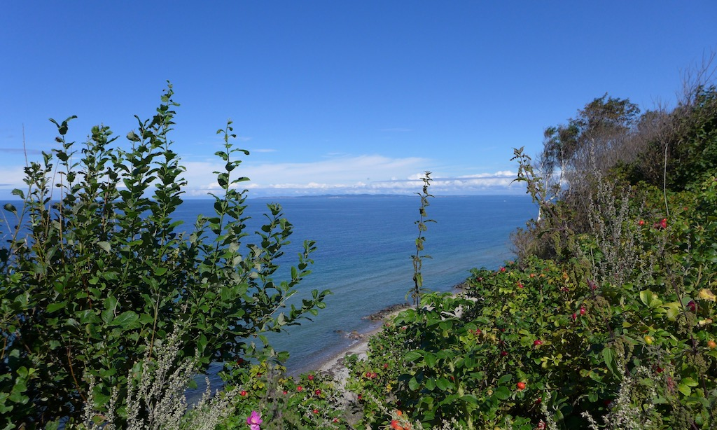 Aussicht auf die Ostsee vom Gilbjergstien