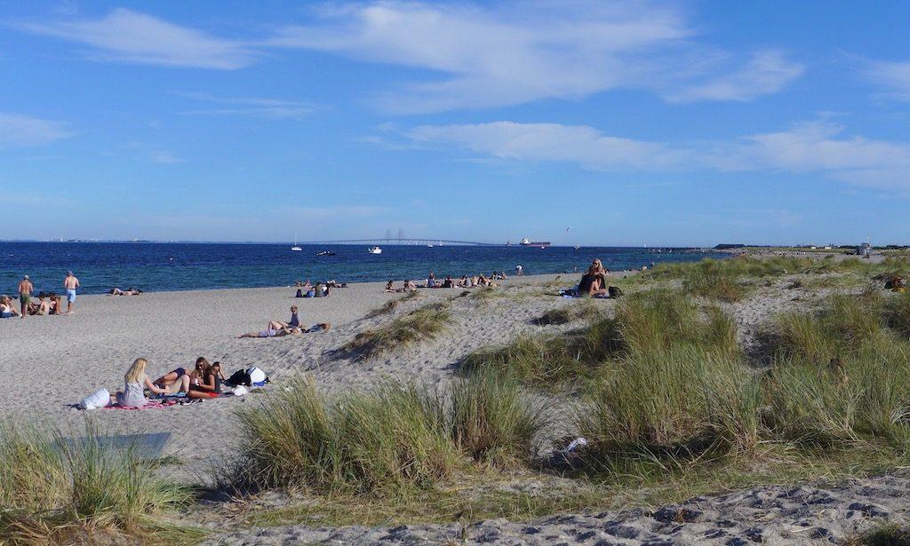 Der Amager Strandpark mit Blick auf die Öresundbrücke bei schönem Wetter