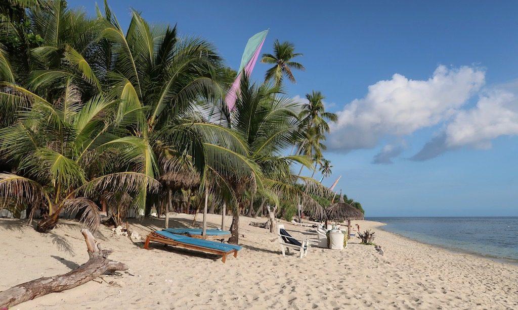 Strand und Palmen am Coco Grove Beach