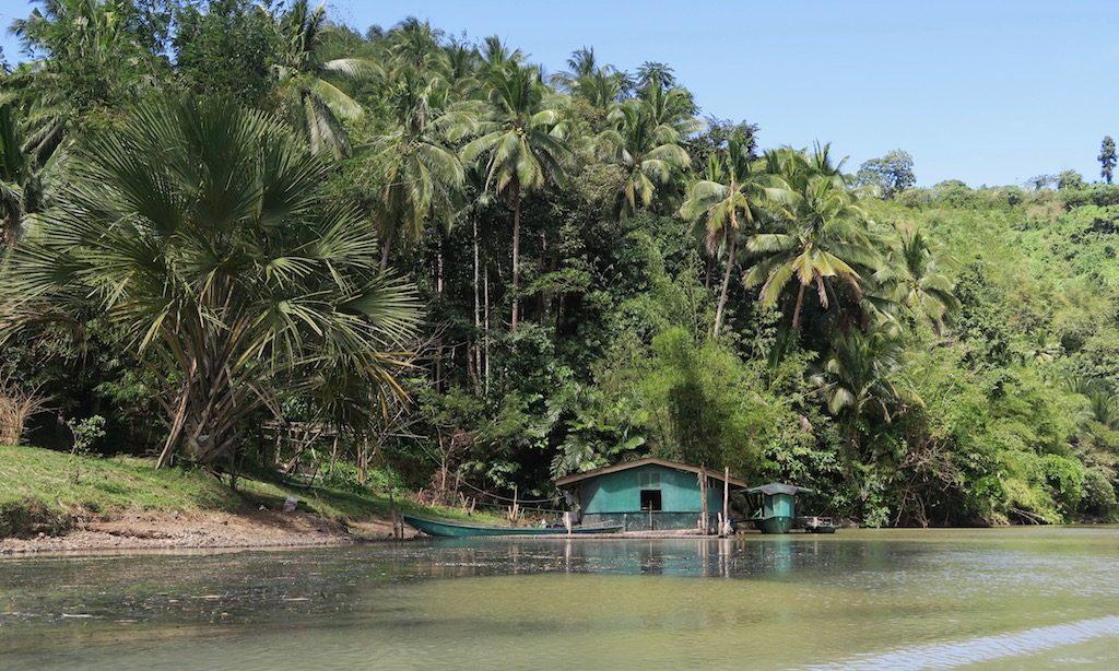 Palmen und ein Haus am Bumbungan River