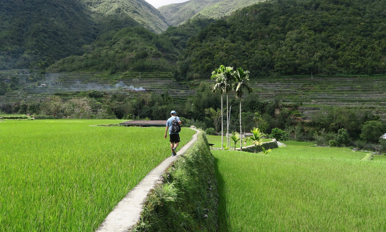 Ein Mann wandert durch die Reisterrassen von Hapao