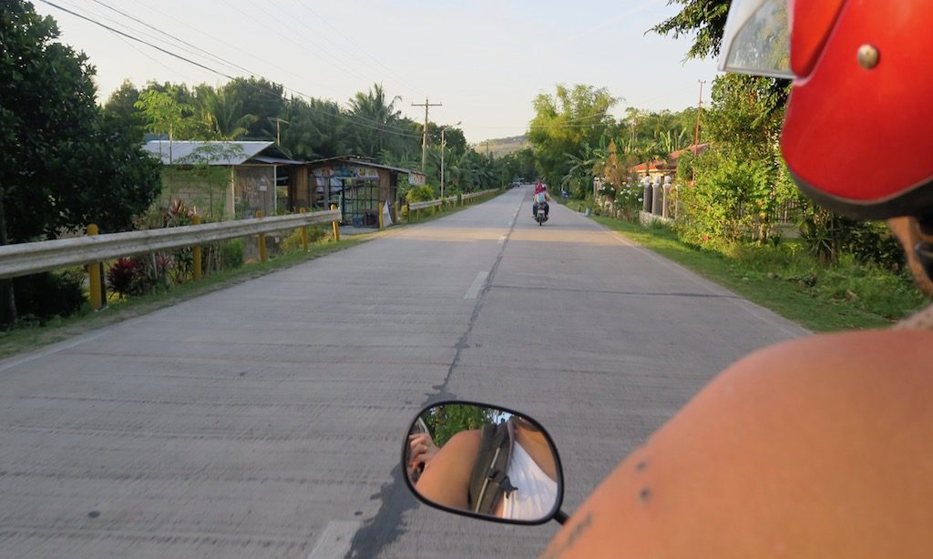 Straße Palmen aus der Scooter Perspektive