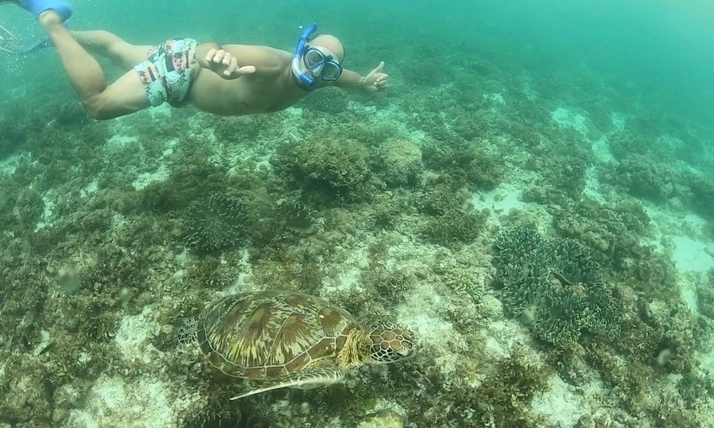 Benda schnorchelt neben einer Meeresschildkröte an einem rainy Day am Panagsama