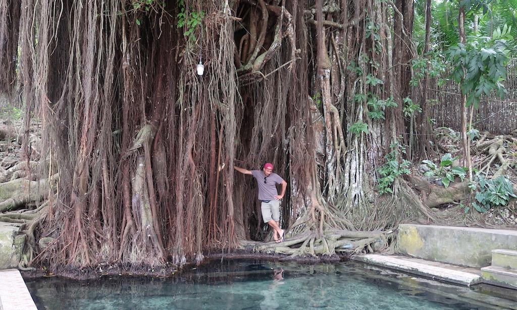 Bendja lehnt sich an den Balate Tree in Siquijor
