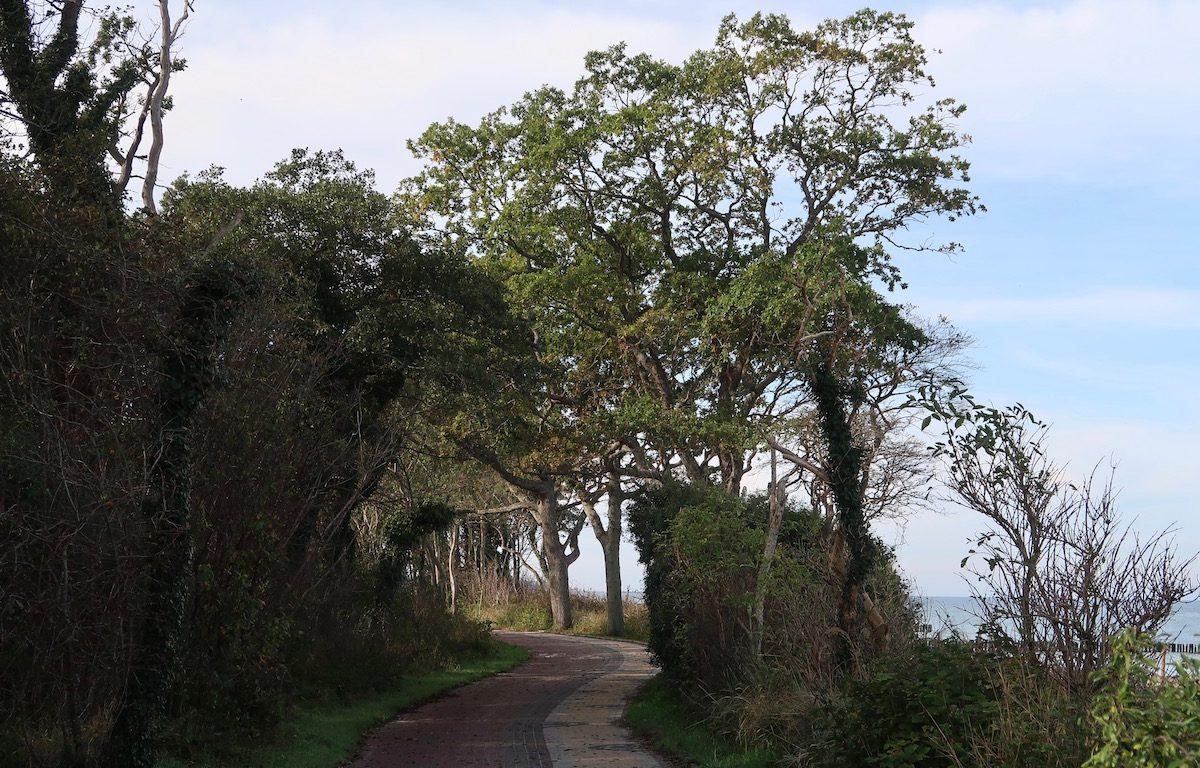 Podzele Radweg zwischen Strand und Ekopark